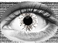 ColourVUE Crazy Lens - Vikingdom - nedioptrické jednodenní (2čočky)
