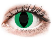 Barevné kontaktní čočky - CRAZY LENS - Cat Eye Green - nedioptrické jednodenní