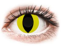 Barevné kontaktní čočky - CRAZY LENS - Cat Eye Yellow - nedioptrické jednodenní