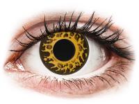 Barevné kontaktní čočky - CRAZY LENS - Cheetah - nedioptrické jednodenní