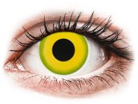 Barevné kontaktní čočky - CRAZY LENS - Forest Children - nedioptrické jednodenní